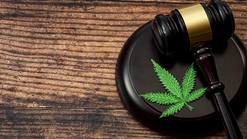 wooden gavel and a cannabis leaf on a table
