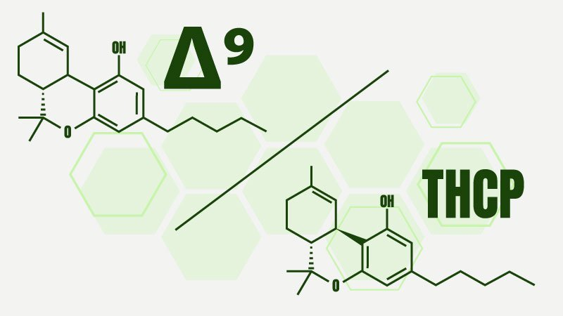 Illustration of Delta 9 vs THCP chemical structures