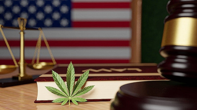 a hemp leaf leaning on a law book with a judge's gavel and US flag at the back