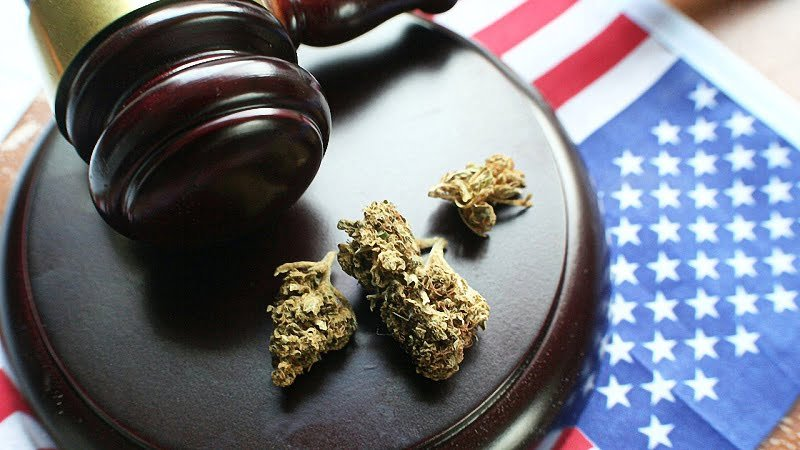 hemp buds on a gavel with a mallet and US Flag beneath